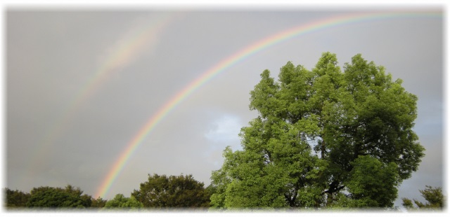 rainbow_image